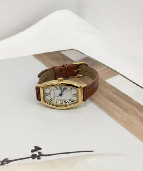 howell watch (brown)